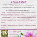 Laboratorio sui fiori di Bach